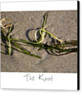The Knot Canvas Print by Peter Tellone