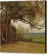 The Landing Of Columbus Canvas Print by Albert Bierstadt