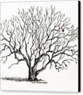 The Last Apple Canvas Print