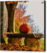 The Last Pumpkin Canvas Print by Lois Bryan