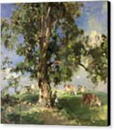 The Old Ash Tree Canvas Print by Edward Arthur Walton