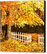 The Picket Fence Canvas Print