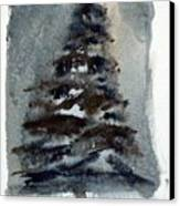 The Pine Tree Canvas Print