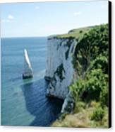 The Pinnacle Stack Of White Chalk From The Cliffs Of The Isle Of Purbeck Dorset England Uk Canvas Print by Andy Smy