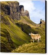 The Quiraing Isle Of Skye Canvas Print by John McKinlay