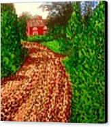 The Red House In Finland Canvas Print