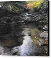 The River At Lady Bagots Canvas Print