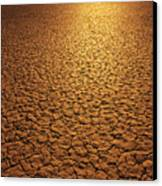 The Sun Reflects Off This Parched Lake Canvas Print by Bill Hatcher