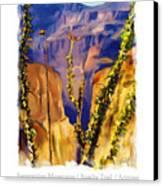 The Superstition Mtns. Az Canvas Print