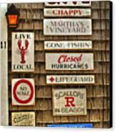 The Vineyard Canvas Print by Joann Vitali