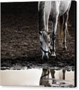 The Water Reflection Canvas Print