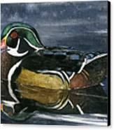 The Wood Duck Canvas Print