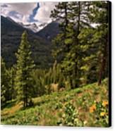 This Is Washington State No.1 - Klipchuck Canvas Print by Paul W Sharpe Aka Wizard of Wonders