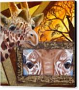 Those Eyes     Giraffe  Safari Series No 3 Canvas Print