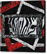 Those Eyes...zebra Canvas Print
