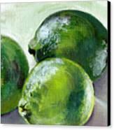 Three Limes Canvas Print