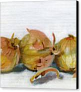 Three Onions Canvas Print by Sarah Lynch