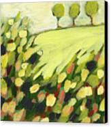 Three Trees On A Hill Canvas Print