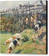 Through The Fence Canvas Print by Arthur Charles Dodd