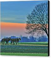 Through The Fields Canvas Print by Scott Mahon