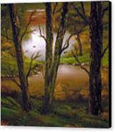 Through The Trees. Canvas Print by Cynthia Adams