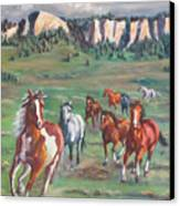 Thunder On The Pine Ridge Canvas Print