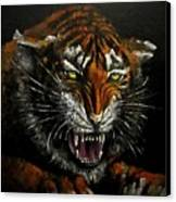 Tiger-1 Original Oil Painting Canvas Print