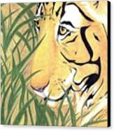 Tiger Traveler - Www.jennifer-d-art.com Canvas Print
