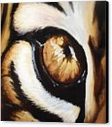 Tiger's Eye Canvas Print by Lane Owen