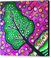 Tilted Into Cosmos Canvas Print by Brenda Higginson