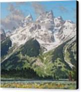 Timbered Island Canvas Print