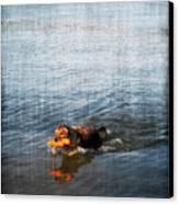 Time To Fetch Canvas Print by Joan  Minchak