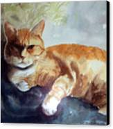 Toby The Best Cat Ever Canvas Print