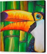 Toco Toucan Canvas Print by Daniel Jean-Baptiste