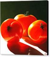 Tomayta Tomato Canvas Print