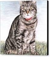 Tomcat Max Canvas Print