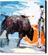 Toroscape 37 Canvas Print