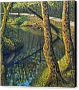Tow Path Canvas Print by Don Perino