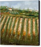 Tra I Filari Nella Vigna Canvas Print by Guido Borelli