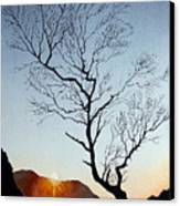 Tree Above Crummock Water Canvas Print