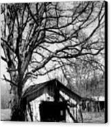Tree-hut Canvas Print