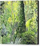 Tree In Garden Canvas Print