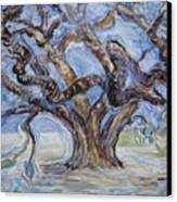 Tree Of Natural Music Canvas Print