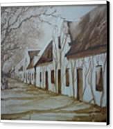 Tree Shadows Canvas Print by Barbi Vandewalle