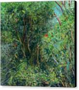 Trees Of Kokee Canvas Print