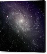 Triangulum Galaxy Canvas Print by A. V. Ley