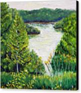 Tributary Salt Fork Lake Ohio Canvas Print