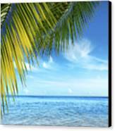 Tropical Beach Canvas Print by Carlos Caetano