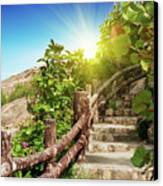 Tropical Garden Canvas Print by MotHaiBaPhoto Prints