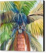 Tropical Palm Inn Canvas Print